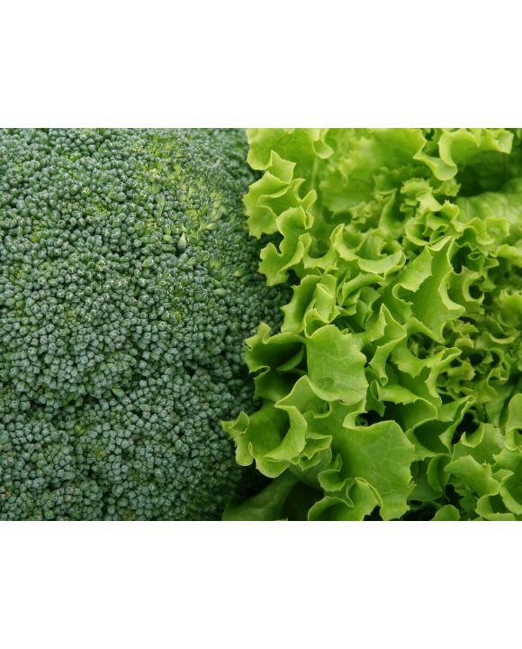 Lais Puzzle - Brokkoli und Salat - 1.000 Teile