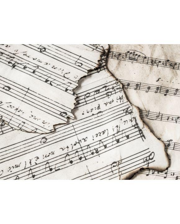 Lais Puzzle - Musiknoten - 1.000 Teile