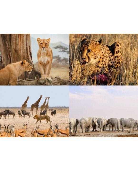 Lais Puzzle - Collage Afrikanische Tiere - 100, 200, 500, 1.000 & 2.000 Teile