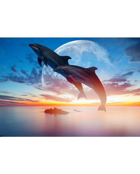 Lais Puzzle - Springende Delfine vor Mond - 100, 200, 500 & 1.000 Teile