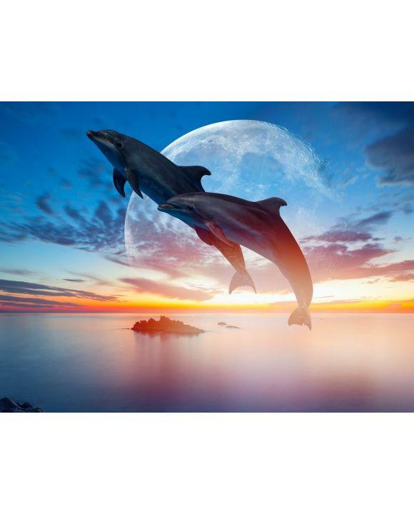 Lais Puzzle - Springende Delfine vor Mond - 100, 200, 500, 1.000 & 2.000 Teile
