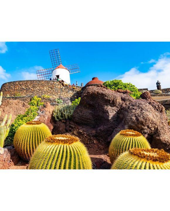 Lais Puzzle - Kaktusgarten, Jardin de Cactus in Guatiza, Lanzarote, Kanarische Inseln, Spanien - 100, 200, 500, 1.000 & 2.000 Teile