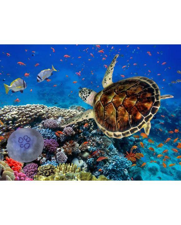 Lais Puzzle - Korallenriff mit Fischen und Wasserschildkröte - 100, 200, 500, 1.000 & 2.000 Teile