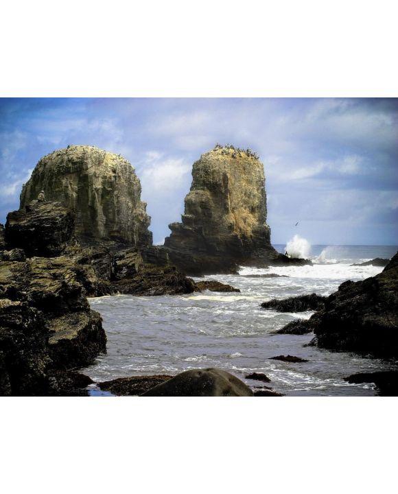 Lais Puzzle - Punta Lobos - Pichilemu - Chile - 100, 200, 500, 1.000 & 2.000 Teile