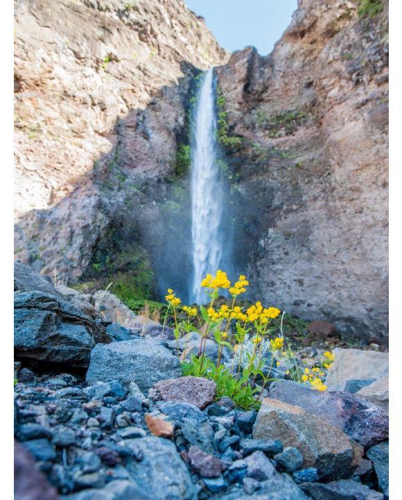 Lais Puzzle - Riesiger Wasserfall in der Wüste. Detail des Wüstenlebens. Antuco Vulkan schwarze Vulkanwüste. Blühende Blumen, Bäume und Steine in der Nähe des Baches. - 100, 200, 500, 1.000 & 2.000 Teile