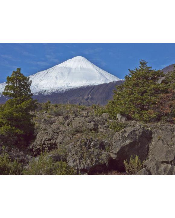 Lais Puzzle - Der schneebedeckte Gipfel des Vulkans Antuco (2.979 m) erhebt sich über einem bewaldeten Tal im Nationalpark Laguna de Laja in der Bio-Bio-Region von Chile - 100, 200, 500, 1.000 & 2.000 Teile