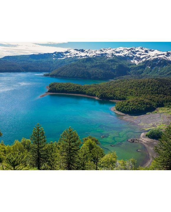 Lais Puzzle - Conguillio See, Chile - 100, 200, 500, 1.000 & 2.000 Teile
