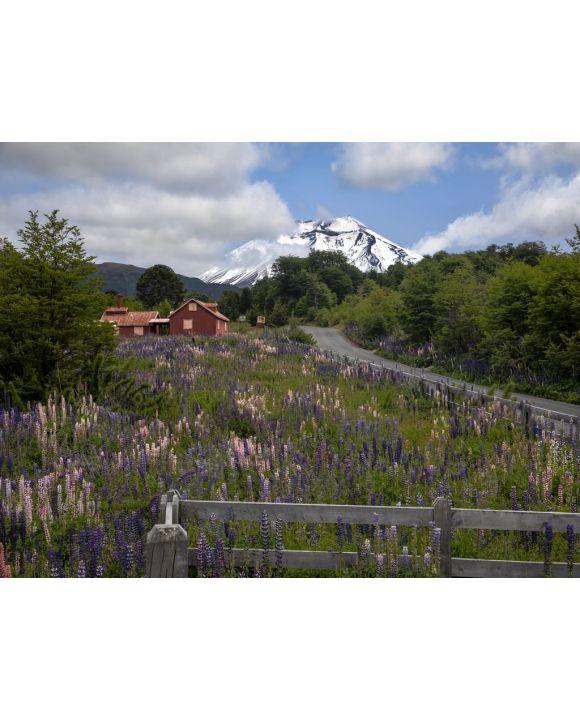 Lais Puzzle - Eintritt in das Corralco Ski Center im Malalcahuello National Reserve, Region Araucanía, Chile - 100, 200, 500, 1.000 & 2.000 Teile