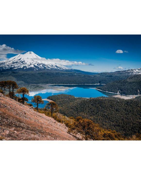 Lais Puzzle - Conguillio Park, Temuco, Chile - 100, 200, 500, 1.000 & 2.000 Teile