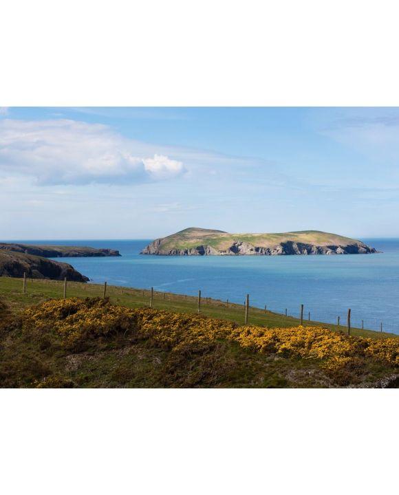 Lais Puzzle - Cardigan Island, Ceredigion, Wales - 500 & 1.000 Teile