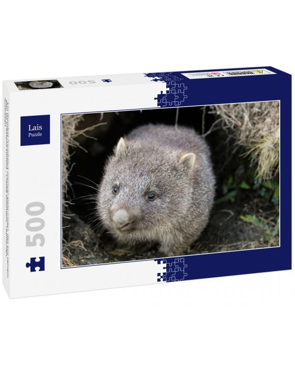 Lais Puzzle - Ein Wombat (Vombatus ursinus)-Baby (Joey), das aus seinem Bau im Grasland kommt - Cradle Mountain, Tasmanien Australien - 500 Teile