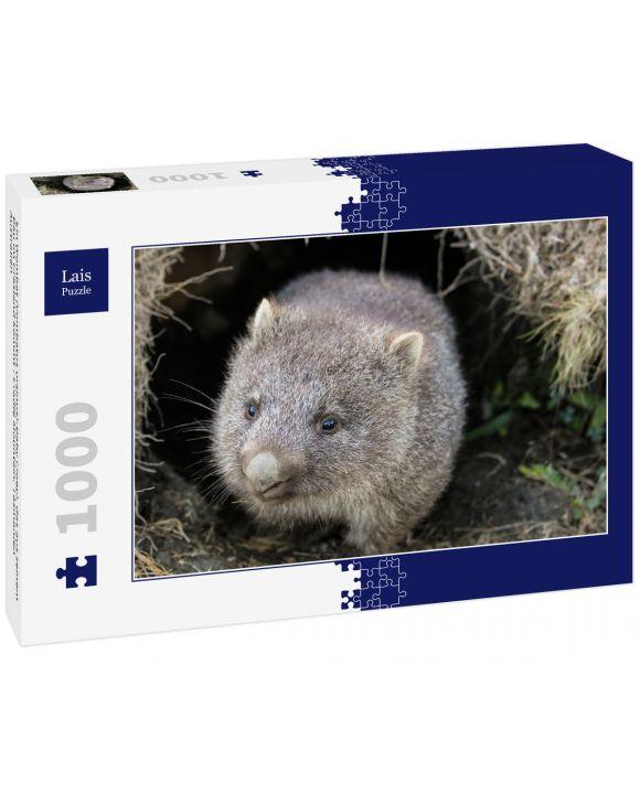 Lais Puzzle - Ein Wombat (Vombatus ursinus)-Baby (Joey), das aus seinem Bau im Grasland kommt - Cradle Mountain, Tasmanien Australien - 1.000 Teile