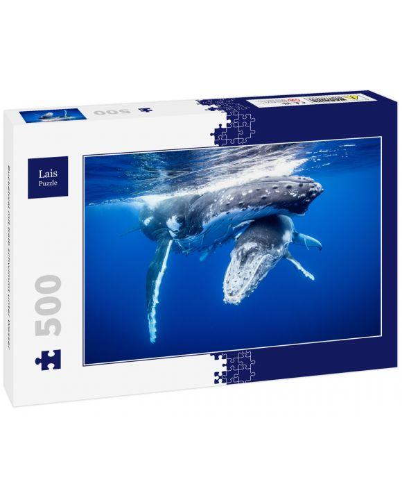 Lais Puzzle - Buckelwal mit Kalb schwimmt unter Wasser - 500 Teile