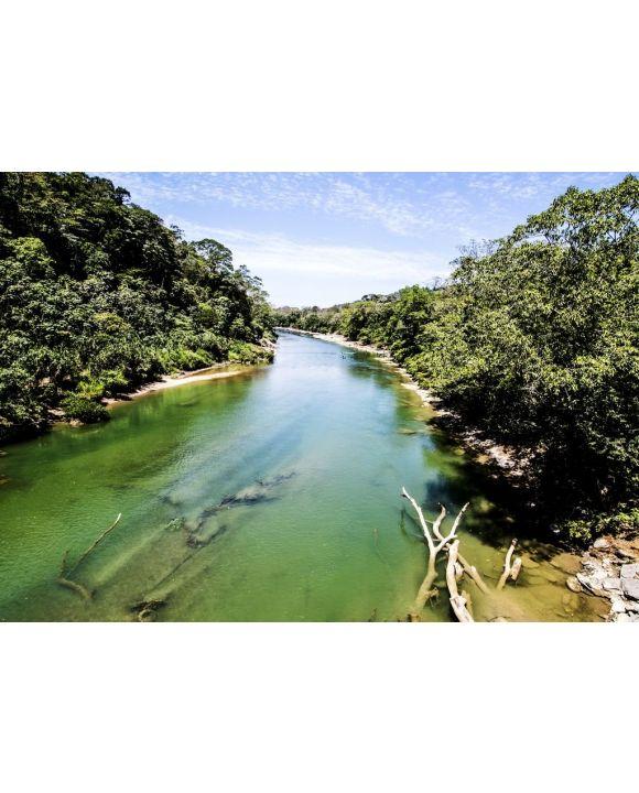 Lais Puzzle - Blick auf einen der Flüsse von Tabasco - 500 & 1.000 Teile