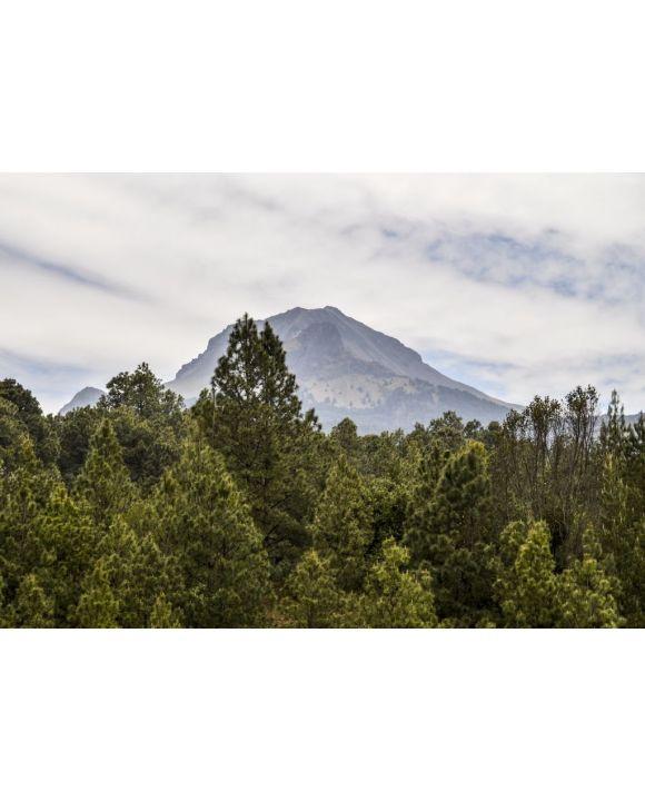 Lais Puzzle - La Malinche National Park Tlaxcala, Mexiko - 500 & 1.000 Teile