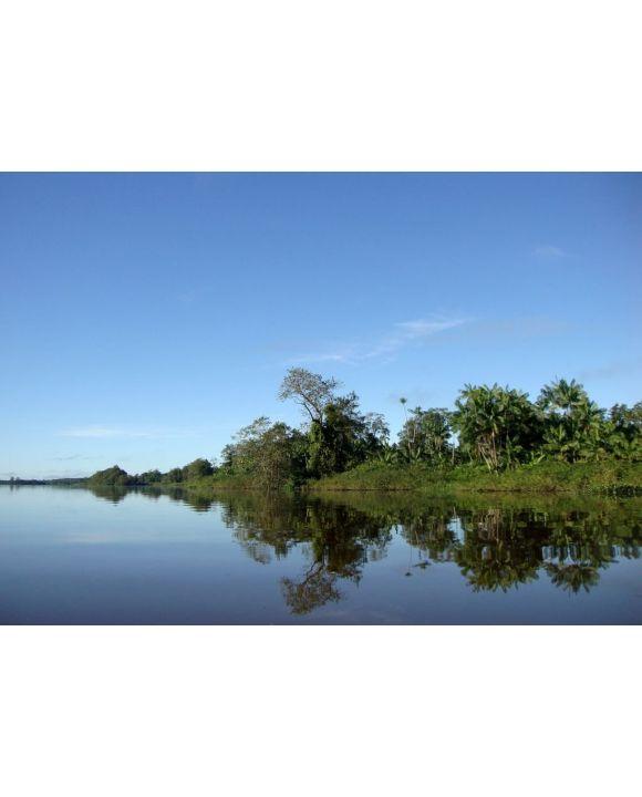Lais Puzzle - Naturlandschaft an den Ufern des Gurupi-Flusses, der die brasilianischen Bundesstaaten Para und Maranhao trennt - 500 & 1.000 Teile