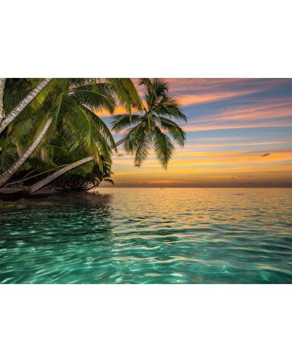 Lais Puzzle - Tropischer Strand - 500 & 1.000 Teile
