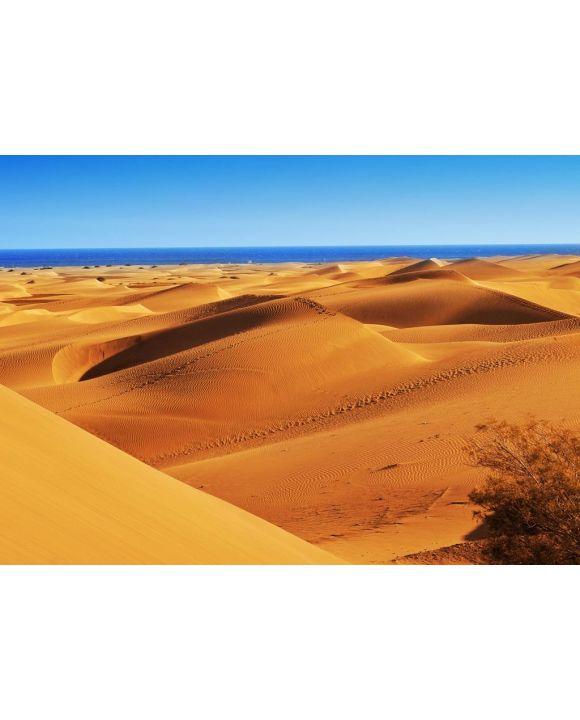 Lais Puzzle - Naturreservat der Dünen von Maspalomas, auf Gran Canaria, Spanien - 500 & 1.000 Teile
