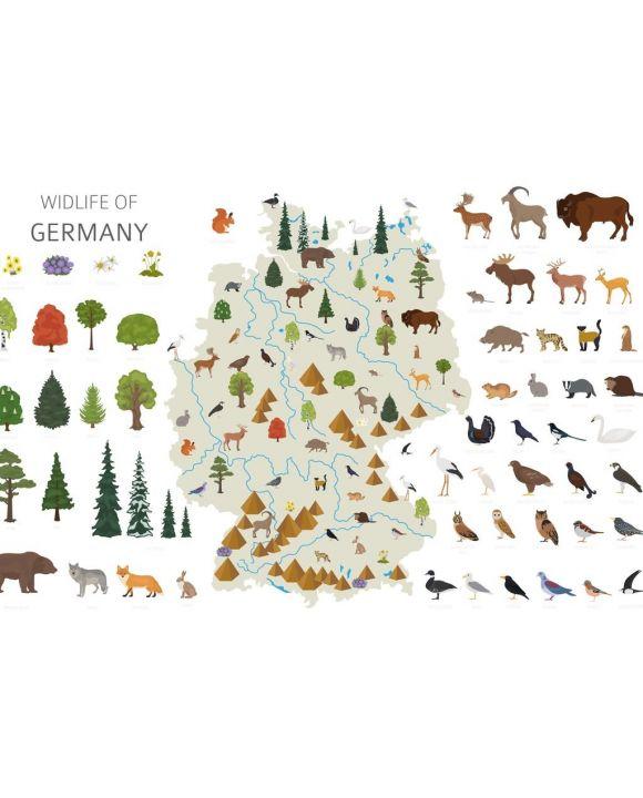 Lais Puzzle - Deutschlands Tierleben - 500 & 1.000 Teile