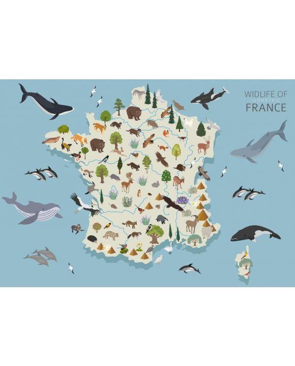 Lais Puzzle - Frankreichs Tierleben - 500 & 1.000 Teile