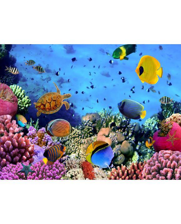 Lais Puzzle - Korallenriff - 500 & 1.000 Teile