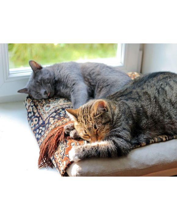 Lais Puzzle - Katzen schlafend - 100, 200, 500, 1.000 & 2.000 Teile